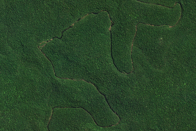 Protecting Public Lands with High-Frequency Satellite Imagery