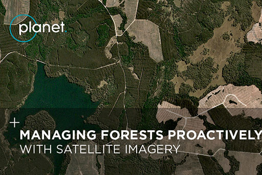 Monitor your forests with high cadence data