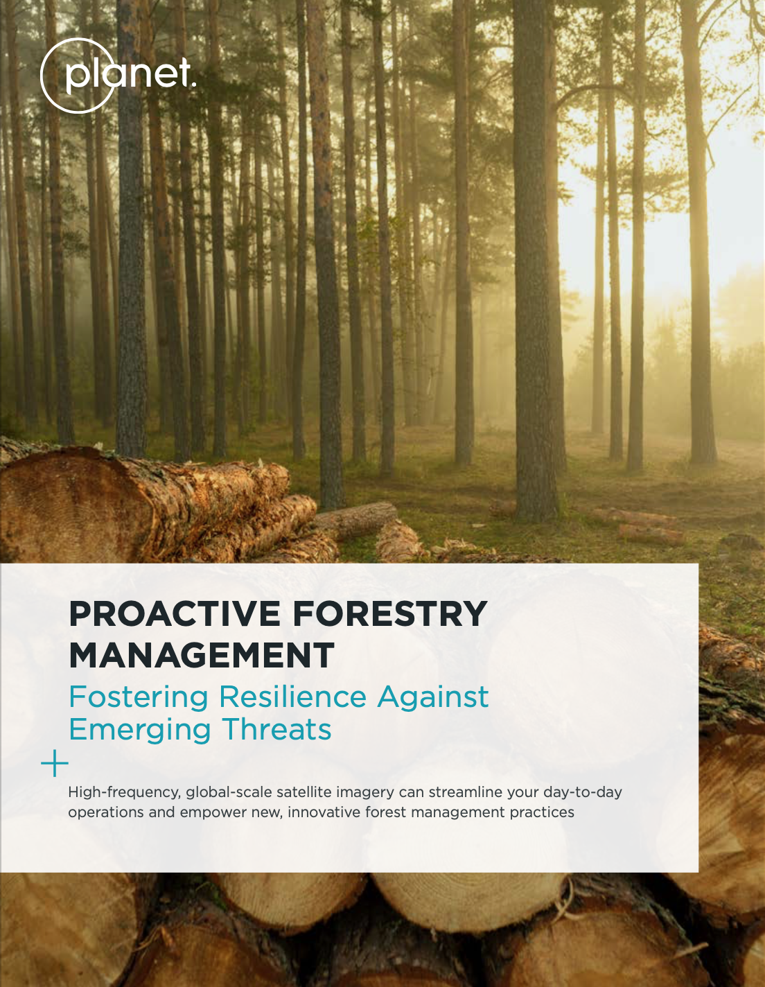 Proactive Forestry Management: Fostering Resilience Against Emerging Threat